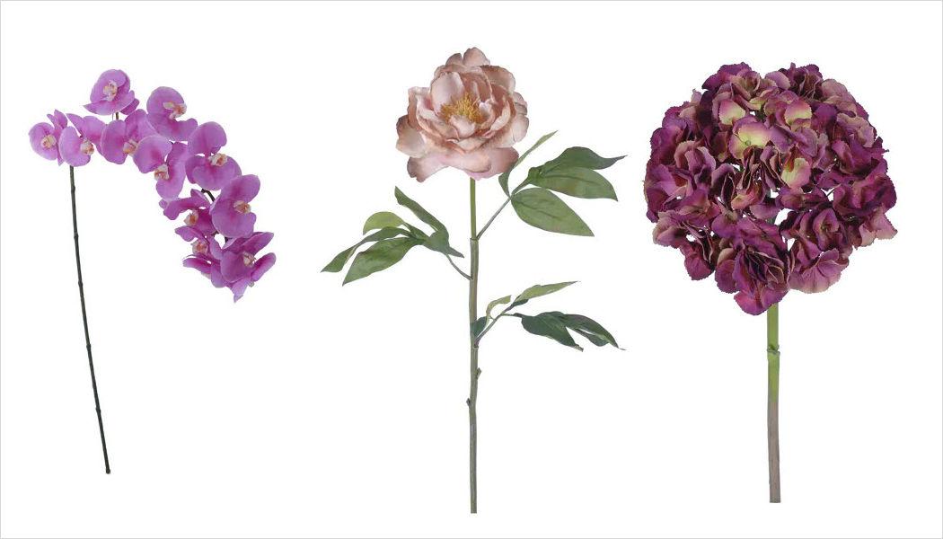Pomax Fleur artificielle Fleurs et compositions Fleurs et Senteurs  |