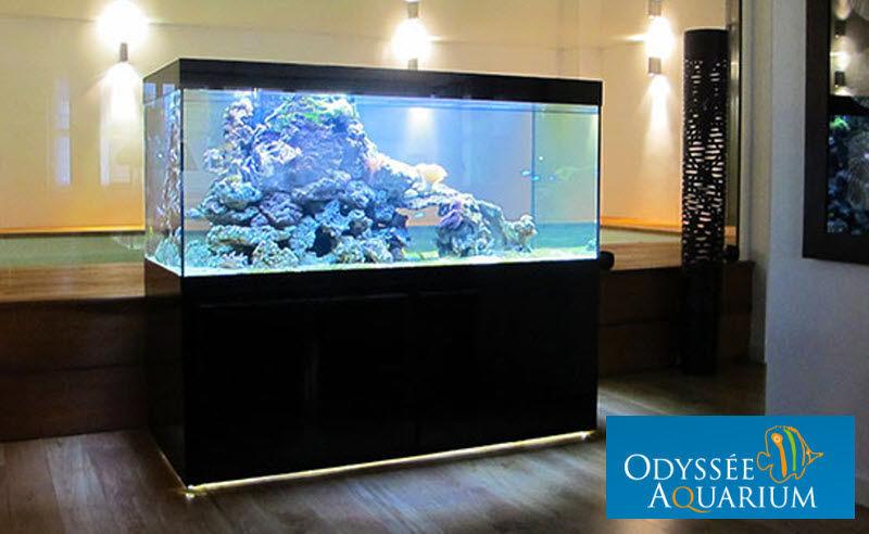 odyssee aquarium Aquarium Animaux Objets décoratifs  |
