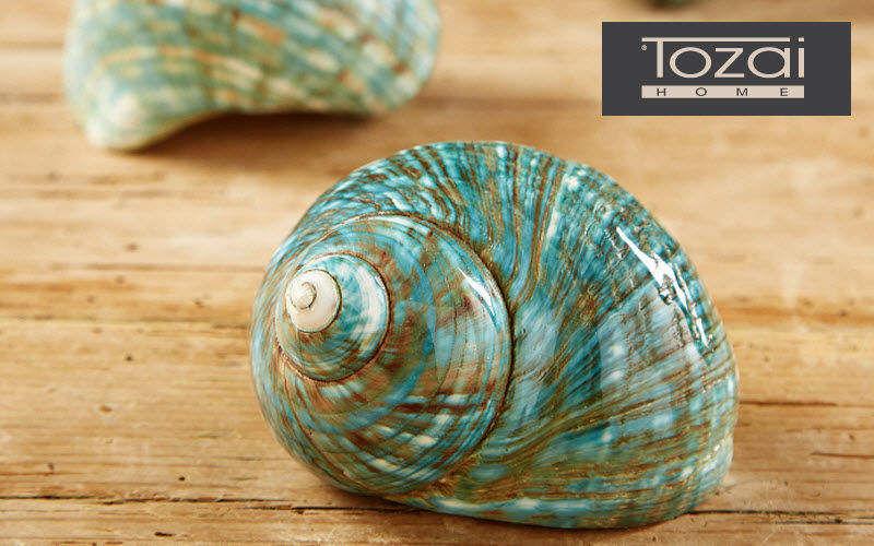 Tozai Home Coquille d'escargot Divers Cuisine Accessoires  |