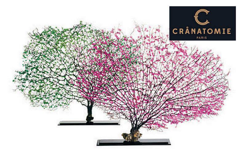 CRANATOMIE Sculpture végétale Ornements de jardin Extérieur Divers  |