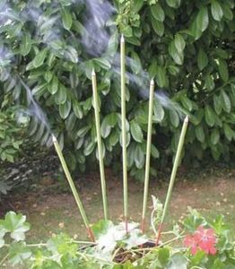 Diffusion Rosicrucienne -  - Encens De Jardin
