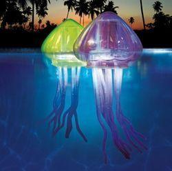 Décoration flottante de piscine