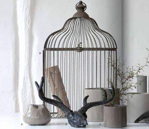 COZY Room -  - Cage À Oiseaux