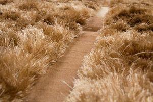 NAZAR - tapis diva 80x150 caramel - Tapis Contemporain