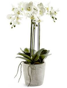 MARK AND SPENCER -  - Fleur Artificielle