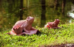 Enzo Zago - grenouille - Sculpture Animalière