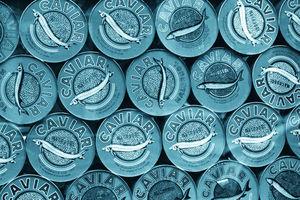 gohome wallpaper - gohome wallpaper, caviar petrol - Papier Peint