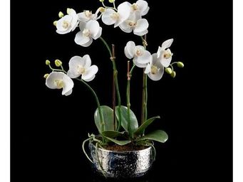 Deco Factory - orchid�e artificielle quadruple pot argent silver - Composition Florale
