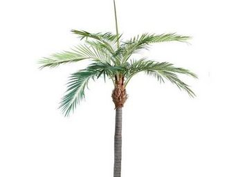 Deco Factory - grand palmier artificiel sun beach 350 cm - Arbre Artificiel