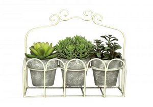 Demeure et Jardin - jardinière de plantes grasses - Plante Artificielle