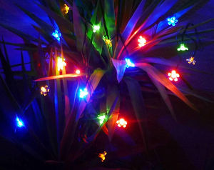 FEERIE SOLAIRE - guirlande solaire 20 fleurs multicolores � clignot - Guirlande Lumineuse