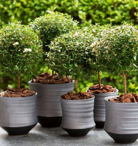 o4Home -  - Pot De Jardin
