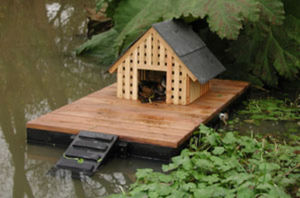 Atelier Du Rivage - l'�le aux canards - Maison D'oiseau