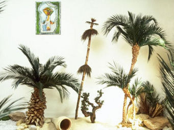 Hortus Verde - oasis stylisée - Arbre Stabilisé