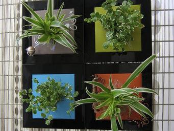 LES JARDINS DE CHLOE - tam tam - Tableau Végétal