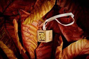 BSAB -  - Bougie Parfum�e