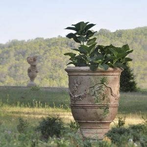 Le Chene Vert - prestige antica - Vase D'anduze