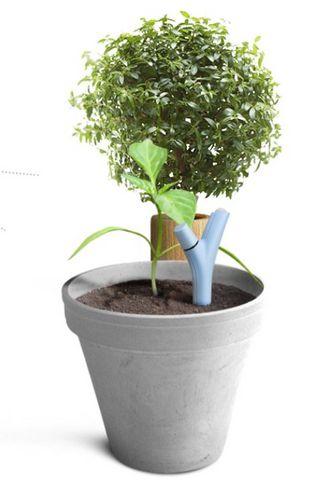 PARROT - Capteur pour plantes-PARROT-Flower