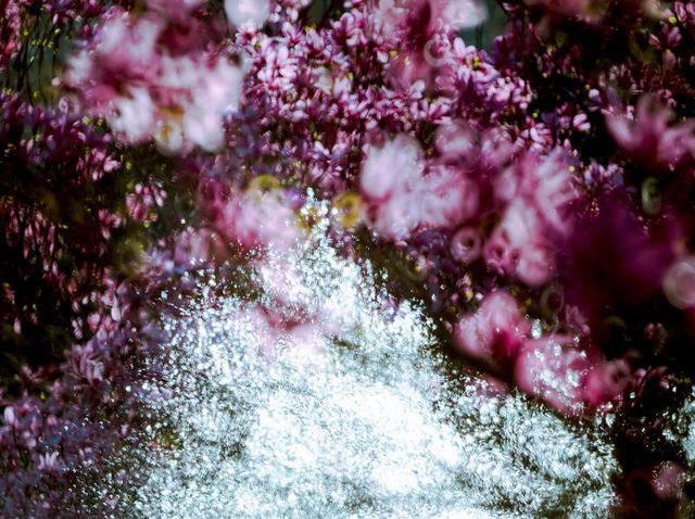 LIONEL ROY - Photographie-LIONEL ROY--Overlap-