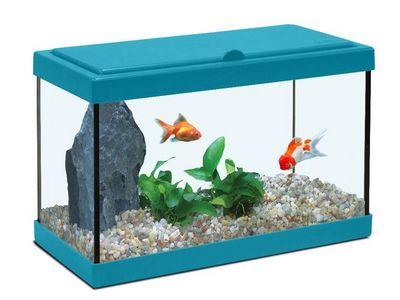 ZOLUX - Aquarium-ZOLUX-Aquarium enfant bleu lagon 18L