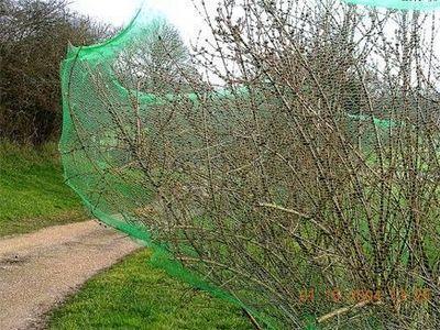 La boutique du jardinage - Filet oiseaux-La boutique du jardinage-Filet de protection anti-oiseaux 5 m x 2 m