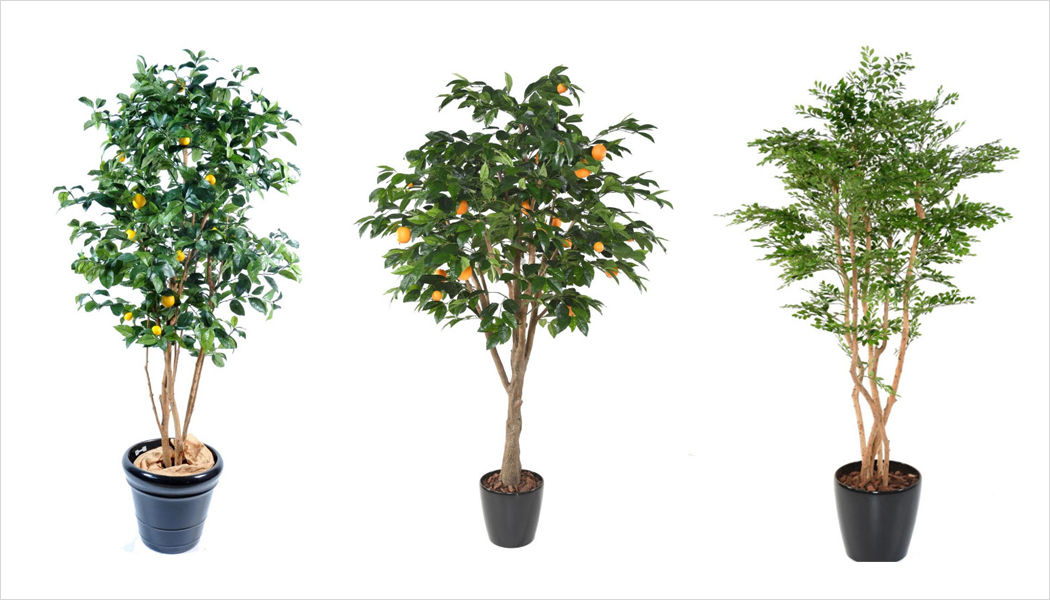 ARTIFICIELFLOWER Artificial tree Trees & plants Flowers and Fragrances  |