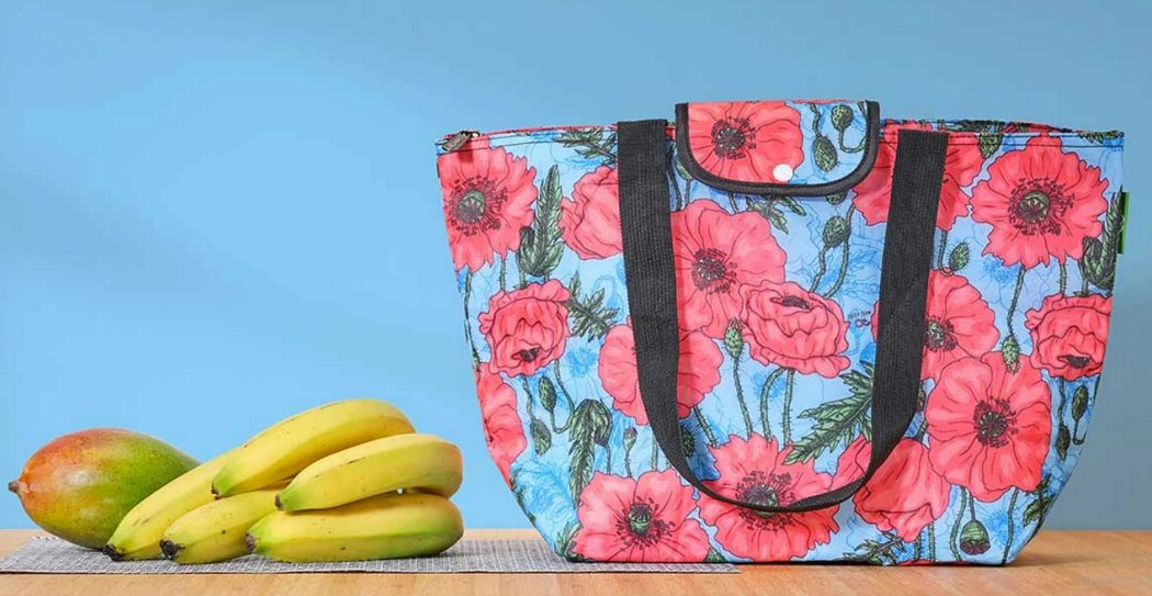 ECO-CHIC Refrigerated bag Packaging Beyond decoration  |