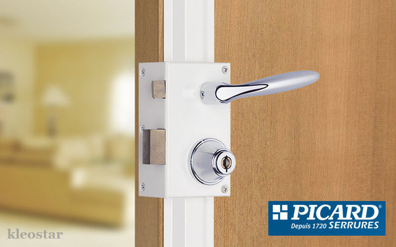 Picard Serrures Multiple lock Door fittings Doors and Windows  |