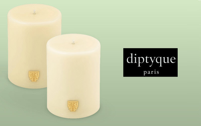 Diptyque Candle Candles and candle-holders Decorative Items  |