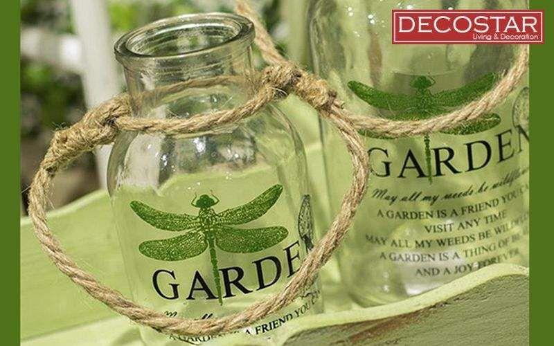 DECOSTARS Herbs pot Preserves (Containers-Pots-Jars) Kitchen Accessories  |