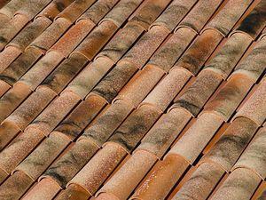 Tejas Borja Spanish roof tile