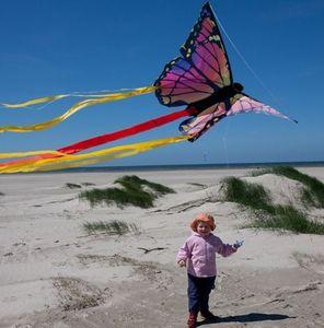 Tete En L' Air Kite