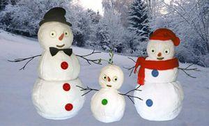 Michel Taillis Creation -  - Christmas Decoration
