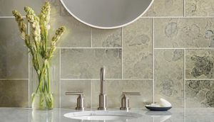 ANTIQUE MIRROR -  - Wall Covering