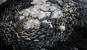 CLEMENTINE BRANDIBAS - voie lactée - Embroidery