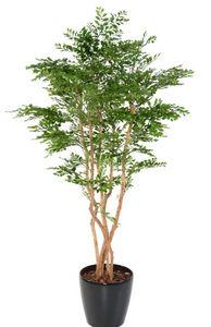 ARTIFICIELFLOWER - acacia - Artificial Tree