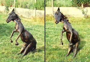 art ALG - cheval - Sculpture