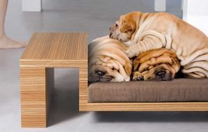PETSMOOD - divanato - Dog Bed