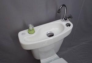 Adaptable toilet bowl