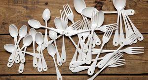 VARIOPINTE -  - Cutlery Service