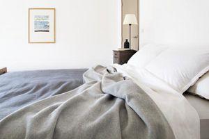Brun De Vian-Tiran -  - Blanket