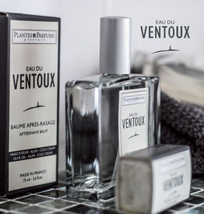 PLANTES & PARFUMS DE PROVENCE -  - Home Fragrance