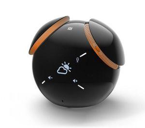 SONY - bsp60-- - Speaker