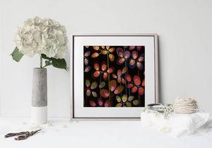 la Magie dans l'Image - print art beautiful flowers black - Decorative Painting