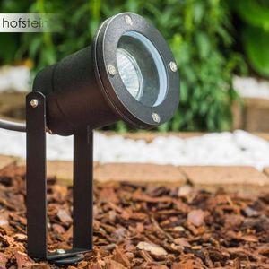 HOFSTEIN -  - Spotlight