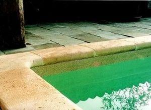 Les Sols Lacigogne -   - Pool Border Tile