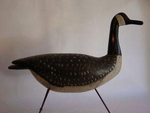 Alain Billard - appelant 600672 - Bird Call