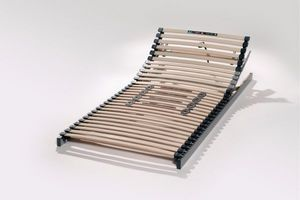 Hasena - http://www.hasena.ch/main/products/lattenroste/ultrafitksit.html - Adjustable Bed