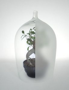 DESIGNER BOX -  - Glass Dome