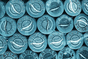 time to GOHOME - gohome wallpaper, caviar petrol - Wallpaper
